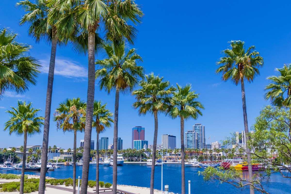 City College Area 78 4 In Long Beach 91 California