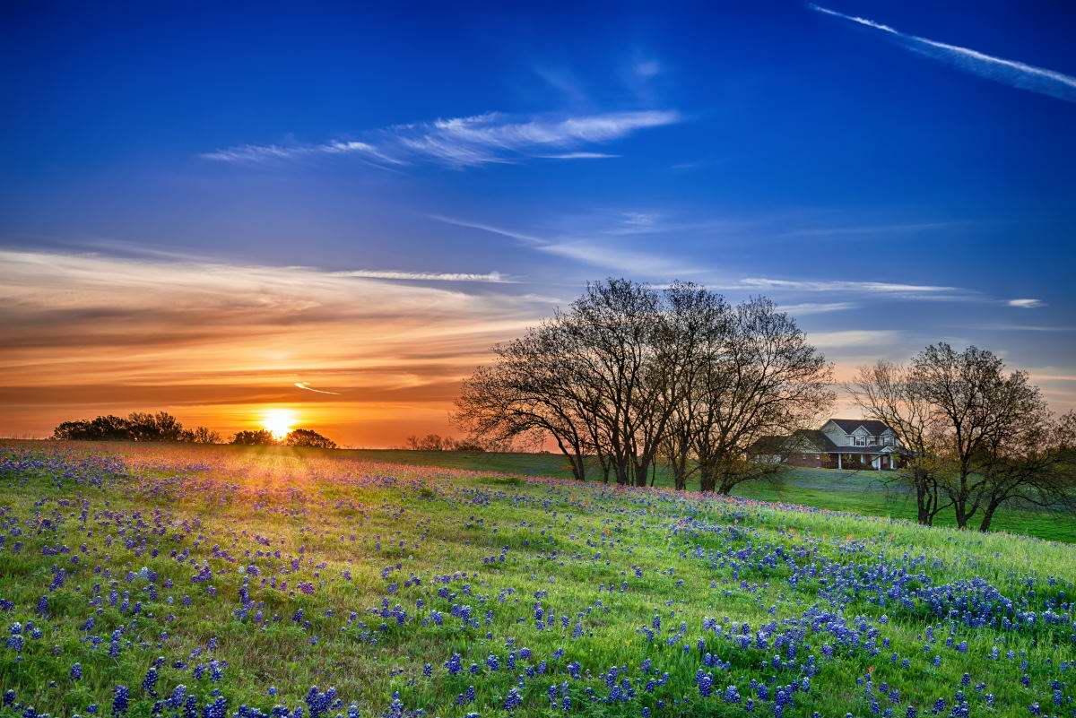 Living In North Richland Hills, TX - North Richland Hills